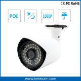 Outdoor Onvif 2MP P2p Poe IP Camera with Mic