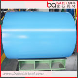 Hot Rolled Coil/PPGI Steel Coil/Prepainted Galvanized Steel Coil
