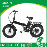 Green Power Rear Motor Fat Tire Electric Bike with LCD-Ys-F0720f