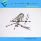 Eg Common Nails/ Wire Nails