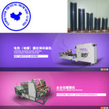 Tam-Zf Pet Floor Electric Heating Film Roll-to-Roll Printing Machine