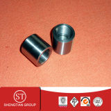 ANSI B16.11 Stainless Steel 304 Threaded Cap