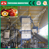 1-20t/H Professional Complete Project of Palm Oil Mill Plant