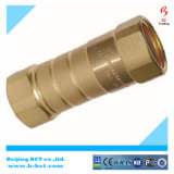 High Pressure Male NPT Pipe/Tube Brass Water Reducing Check Valve