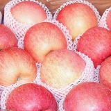 100-125new Crop Delicious Fresh Chinese FUJI Apple