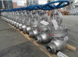 API Cast Steel Multilevel Sealing Class 600 Bw Globe Valve