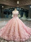 Illusion Lace Gorgeous Ball Gown Wedding Dress in Color