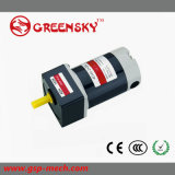 GS High Efficiency Electric Wheelchair Prices DC Gear Motor (25W)