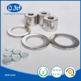 Custom Shaped Permanent Neodymium Magnet for Packing