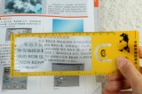 Promotional PVC Magnifier Ruler with 5X Magnify Power