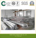 Newest Design Stainless Steel Seamless Pipe with Top Quality