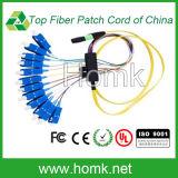 MPO-Sc Sm 12 Cores Fiber Optic Patch Cord