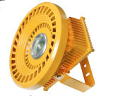 30W~100W Mean Well Driver LED Explosion Proof Light