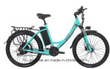 500W 48V Electric Bicycle E-Bike with Lithium Battery
