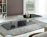 Home Furniture Stainless Steel Modern Coffee Table (CT090#)