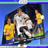 P8 Outdoor Sport Stadium Digital LED Display Billboar