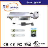 Dimmable 2X 315W Electronic Ballast with Digital Splitter