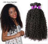 Topest Quality Kinky Curly Straight Hair Brazilian Human Hair Extension