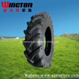 Agricultural Tire/ Tractor Tire/ Farm Tire/ Agr Tire (8.3-24)