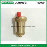Cw617n Automatic Brass Air Vent Valve (IC-3052)