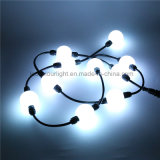 DMX RGB LED Curtain Hanging Ball Light