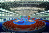 Africa Steel Structure Gymnasium