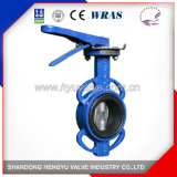 Midline Butterfly Valve with Double-Axis for Industrial Use