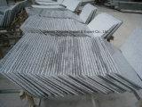 G603 Quarry Owner Grey Granite Tile & Slab for Countertop