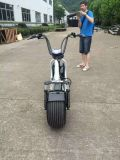 2017 Popular Electric Scooter with Big Wheels, Fashion City Scooter Citycoco
