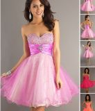 Short Strapless Prom Dress Ball Dresses, Party Dresses (PAD0027)