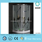 Various Size and Color Simple ABS Shower Room (BLS-9606)