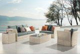Rattan Furniture Sofa Set/ Wicker Furniture/ Outdoor Patio Furniture/ Garden Furniture Set (DH-9620)