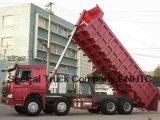 HOWO Dump Truck 8*4 (ZZ3317N3061)