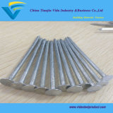 Directly Factory Corrugated Galvanized Roofing Nails 35X2.5mm