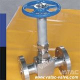 Flanged Forged Steel Cryogenic Globe Valve in Low Temperature