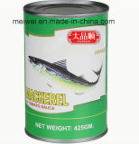 Canned Mackerel Fish in Tomato Sauce