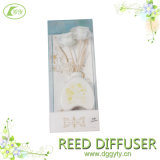 Factory Customize Indoor Air Pure and Fresh Perfume Set