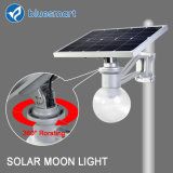 9W Solar Outdoor Garden Street Lighting for Remote Area