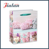 Fashion Design Ribbon Handles Custom Paper Bag for Mother`S Day