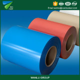 Hight Quality Color Coated PPGI for Building