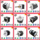 OEM Customized Electric Brushless DC Stepper Stepping Motor for CNC Sewing Machine