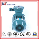 Most Popular Aluminum Flame-Proof Motor with Factory Price