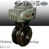Electric Italy Type Thin Ball Valve Made of Staninles Steel