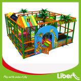 Indoor Playground Type and Plastic Playground Material Indoor Playground Equipment