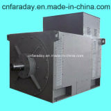 High Voltage Generator Brushless Synchronous AC Generator (FDH)