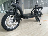 2016 New 36V Lithium Battery Stand up E Scooter