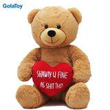 Custom Plush Valentine′s Day Teddy Bear with Red Heart