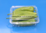 Pet Plastic Packaging Container for Fruit and Vegetable 1000 Gram FDA Offer