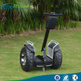 Best Ecorider China off Road Electric Chariot, Double Brand Li-ion Battery Self Balancing Electric Scooter