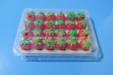 Pet Plastic Fruit Packaging Punnet Clamshell for Blueberry Strawberry 500 Gram